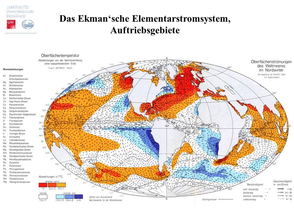 Das Ekman'sche Elementarstromsystem, Auftriebsgebiete