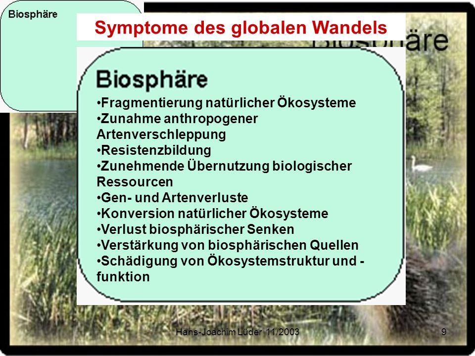 Hans-Joachim Lüder 11/200310 Verstärkter Treibhauseffekt Troposphären Verschmutzung Reduktion stratosphärischen Ozons Zunehmende regionale Luftverschmutzung Globaler und regionaler Klimawandel Zunahme von Spurengasen Symptome des globalen Wandels