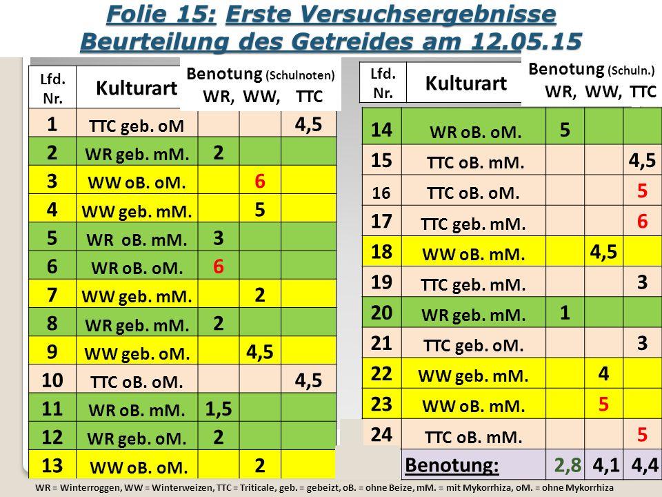 Folie 15: Erste Versuchsergebnisse Beurteilung des Getreides am 12.05.15 Lfd.