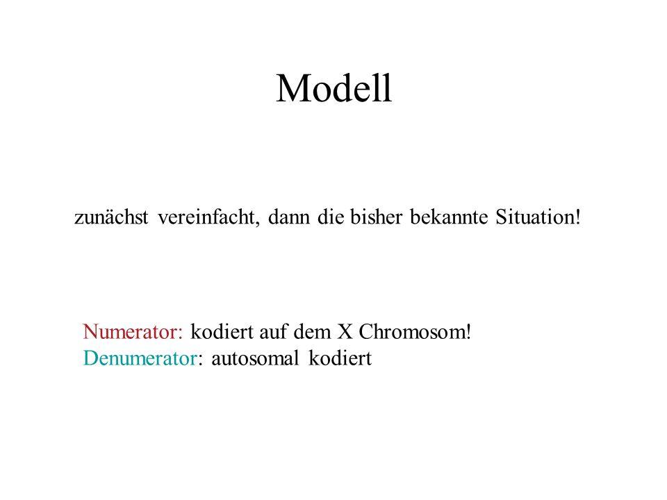 Modell zunächst vereinfacht, dann die bisher bekannte Situation.