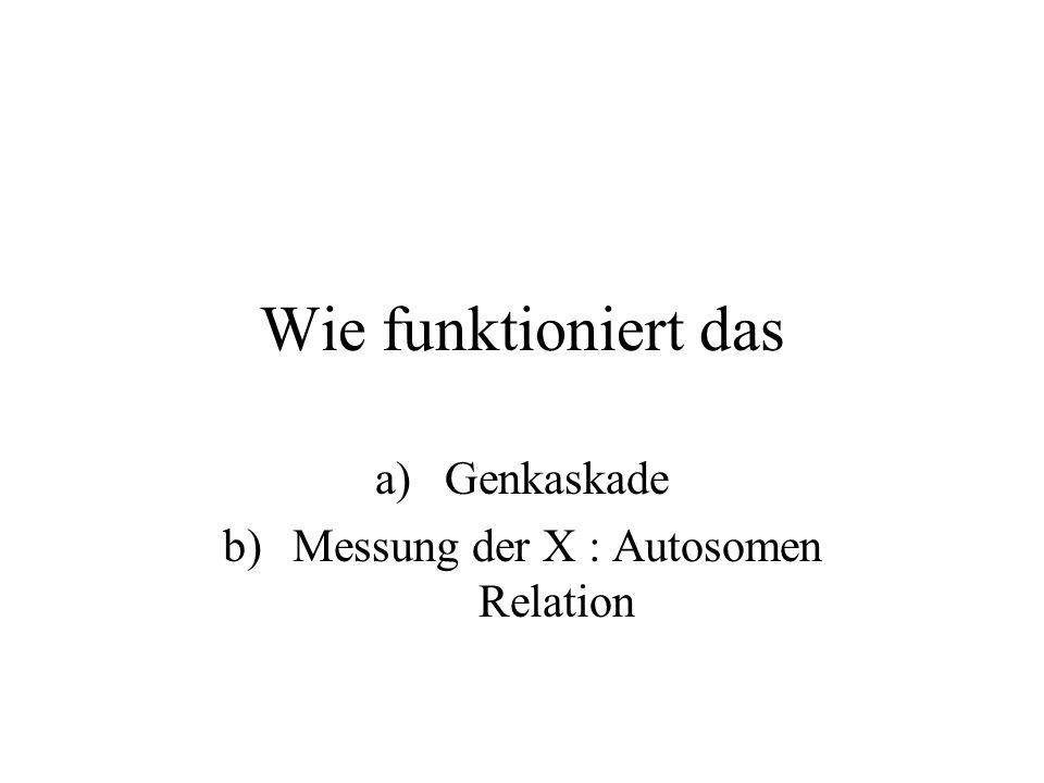 Wolpert12.12 Geschlechtsbestimmung WolpertSummary S.381 Drei Strategien der Dosiskompensation 