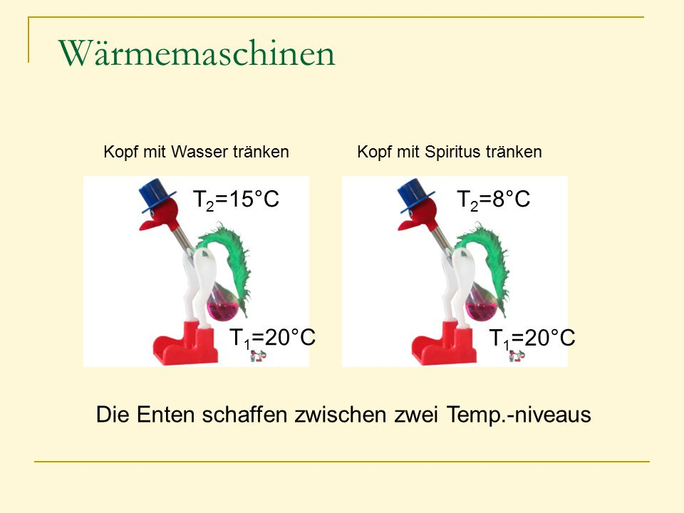 Wärmemaschinen Kopf mit Wasser tränkenKopf mit Spiritus tränken Die Enten schaffen zwischen zwei Temp.-niveaus T 1 =20°C T 2 =15°CT 2 =8°C