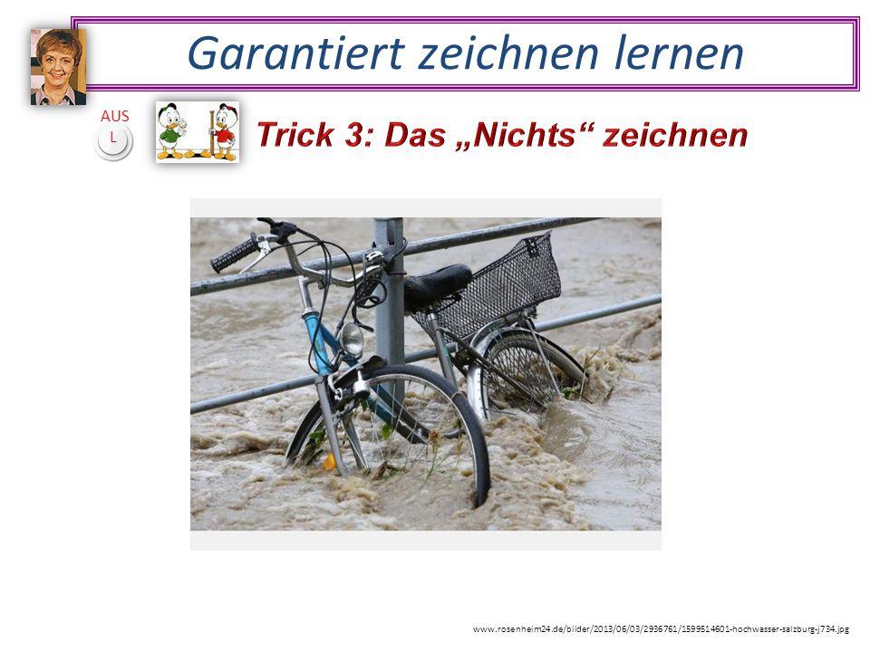 Garantiert zeichnen lernen AUS L www.rosenheim24.de/bilder/2013/06/03/2936761/1599514601-hochwasser-salzburg-j734.jpg