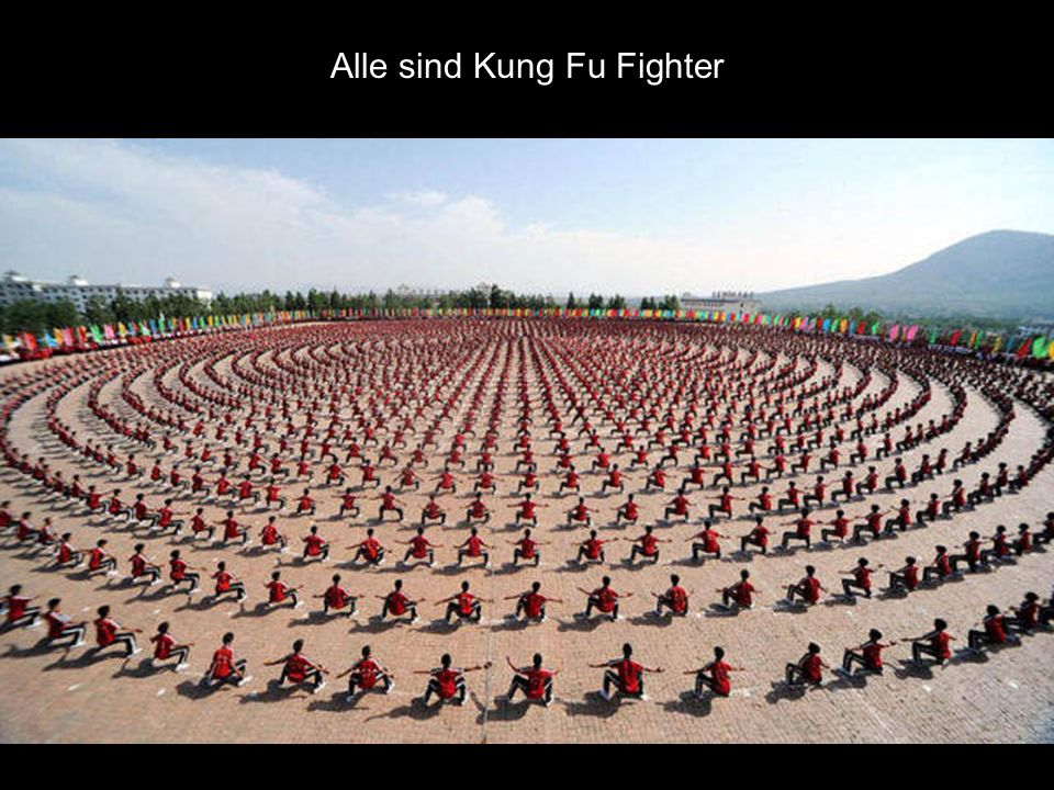 Alle sind Kung Fu Fighter