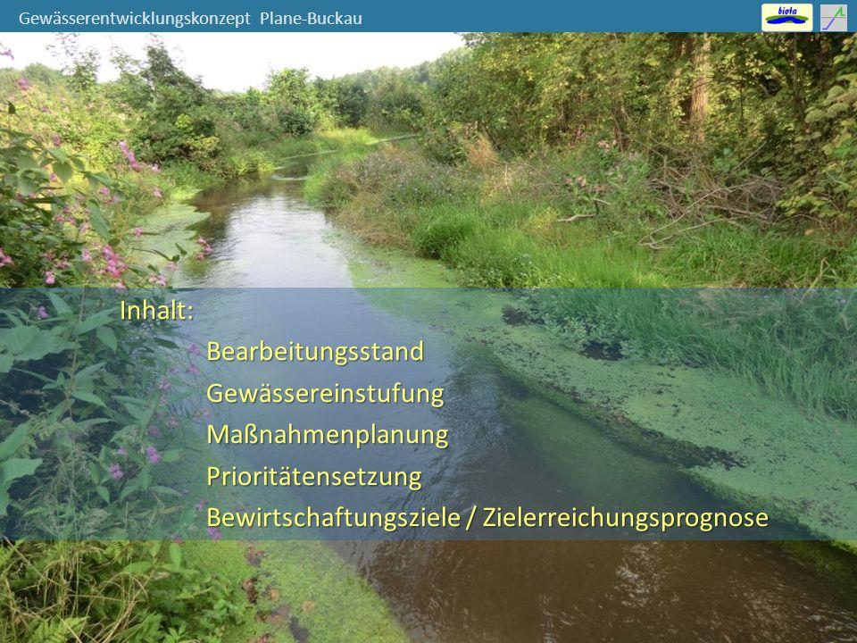 Gewässerentwicklungskonzept Plane-Buckau mittlere bis hohe Umsetzungspriorität: Ist-Zustand Planungsabschnitt → nur geringe Abweichungen vom guten Zustand bzw.