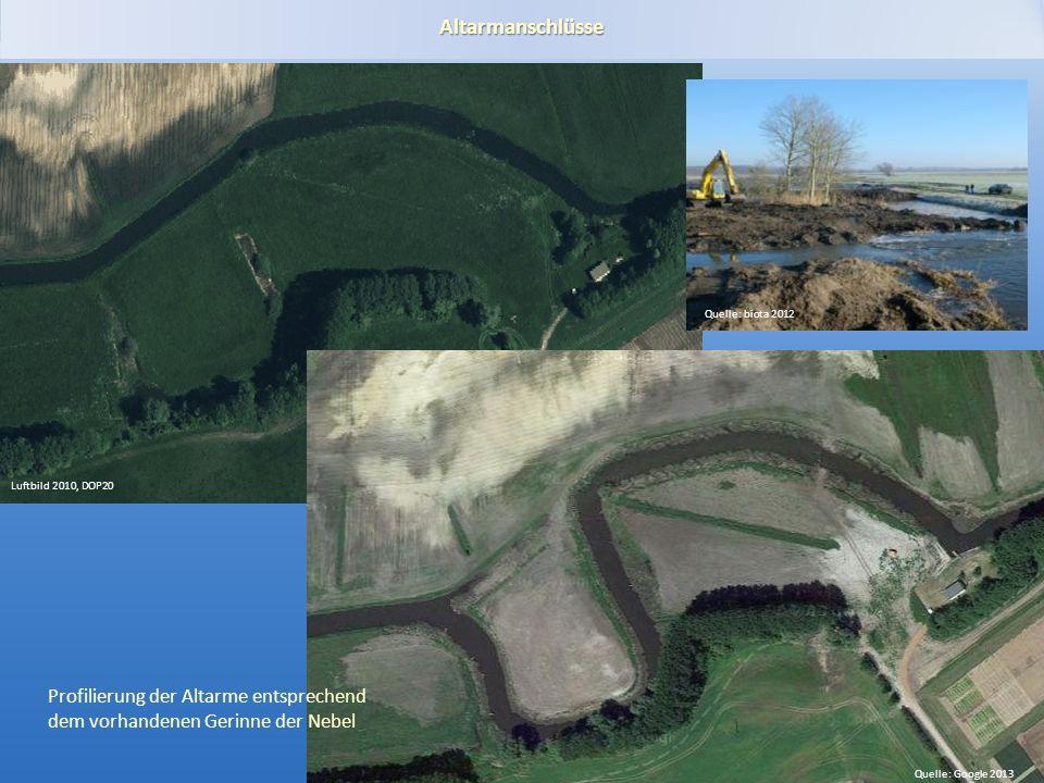 Gewässerentwicklungskonzept Plane-Buckau Altarmanschlüsse Quelle: Google 2013 Luftbild 2010, DOP20 Profilierung der Altarme entsprechend dem vorhandenen Gerinne der Nebel Quelle: biota 2012