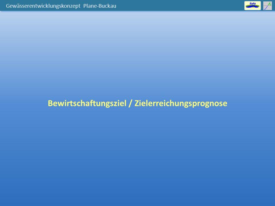 Gewässerentwicklungskonzept Plane-Buckau Bewirtschaftungsziel / Zielerreichungsprognose