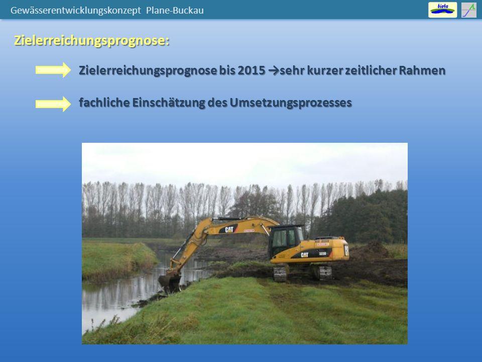 Gewässerentwicklungskonzept Plane-Buckau Zielerreichungsprognose: Zielerreichungsprognose bis 2015 →sehr kurzer zeitlicher Rahmen fachliche Einschätzung des Umsetzungsprozesses