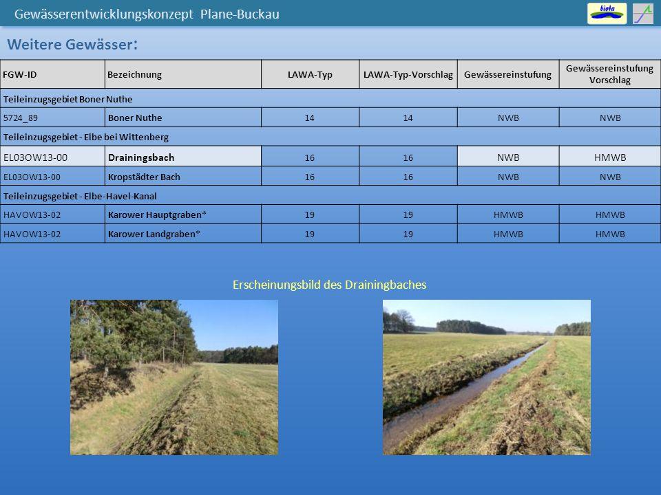 Gewässerentwicklungskonzept Plane-Buckau Maßnahmenplanung