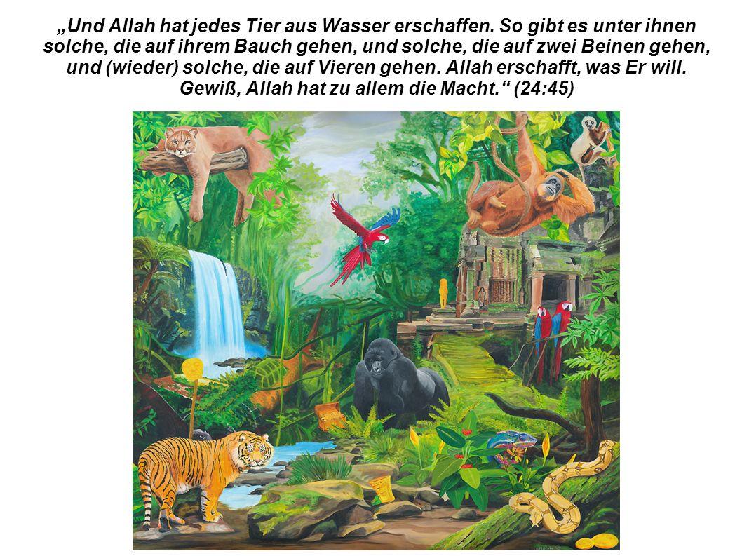 """""""Und Allah hat jedes Tier aus Wasser erschaffen."""