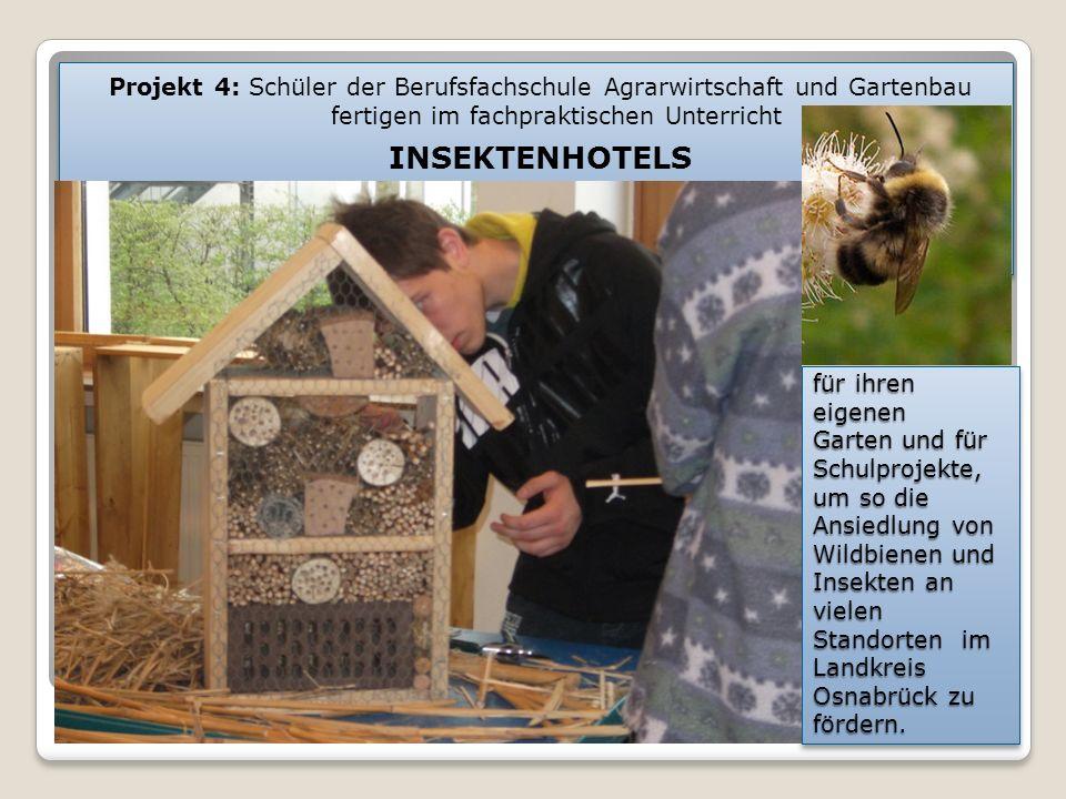 für ihren eigenen Garten und für Schulprojekte, um so die Ansiedlung von Wildbienen und Insekten an vielen Standorten im Landkreis Osnabrück zu fördern.