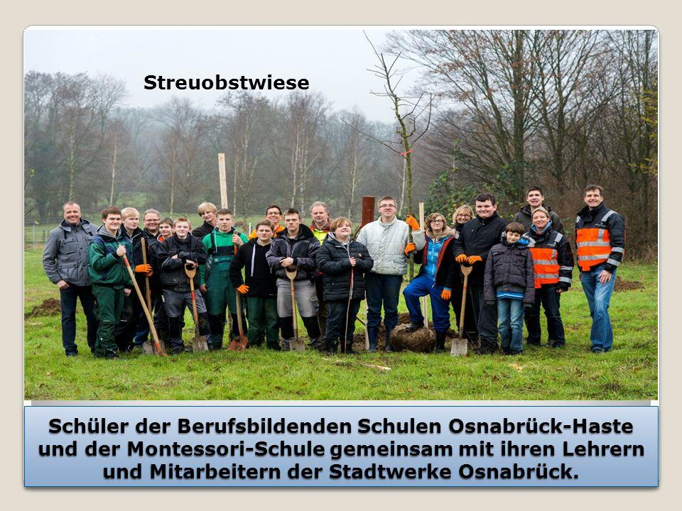 Schüler der Berufsbildenden Schulen Osnabrück-Haste und der Montessori-Schule gemeinsam mit ihren Lehrern und Mitarbeitern der Stadtwerke Osnabrück.