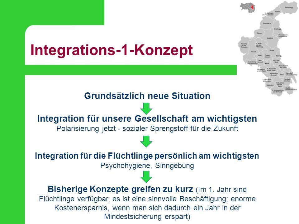 Integrations-1-Konzept 1.Willkommenspaket Grundorientierung, Broschüre, Begrüßungsfeier...