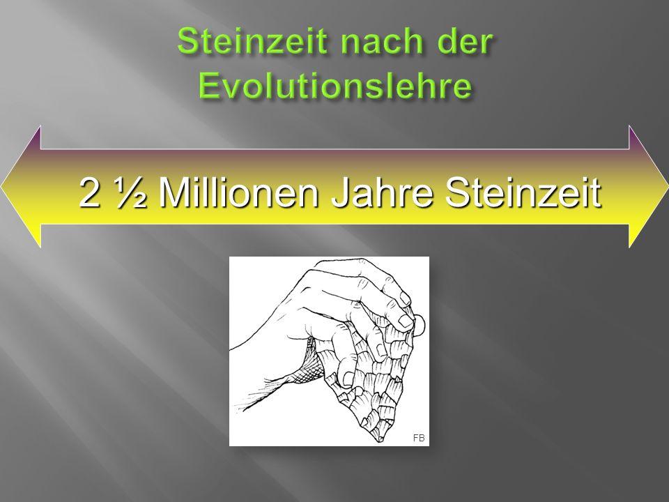 2 ½ Millionen Jahre Steinzeit FB