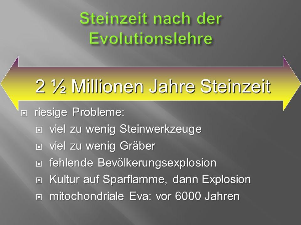  riesige Probleme:  viel zu wenig Steinwerkzeuge  viel zu wenig Gräber  fehlende Bevölkerungsexplosion  Kultur auf Sparflamme, dann Explosion  mitochondriale Eva: vor 6000 Jahren 2 ½ Millionen Jahre Steinzeit