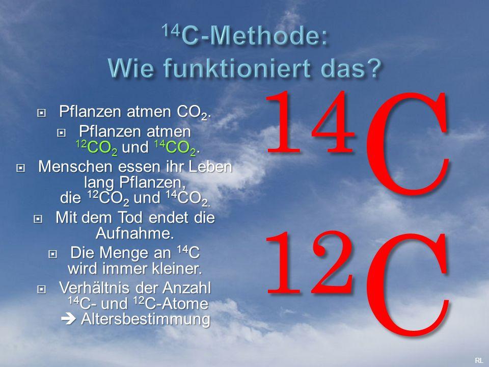  Pflanzen atmen CO 2.  Pflanzen atmen 12 CO 2 und 14 CO 2.