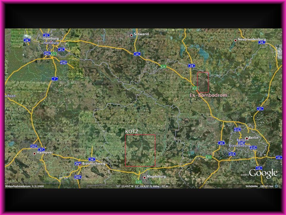 Fläche des GÜZ: 232 km 2 232 km 2 15 x 30 km Ausdehnung 15 x 30 km Ausdehnung zum Vergleich: Ex-Bombodrom 144 km 2 Hannover 204 km 2 Berlin 891km² Köln 405 km 2 Hamburg 755 km 2