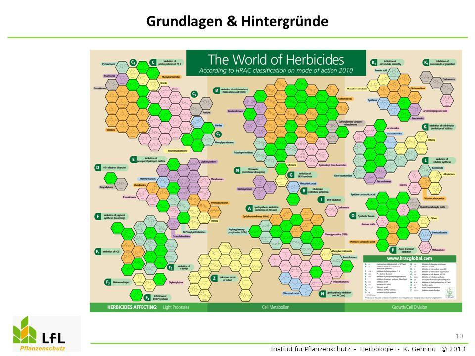 Institut für Pflanzenschutz - Herbologie - K. Gehring © 2013 Grundlagen & Hintergründe 10