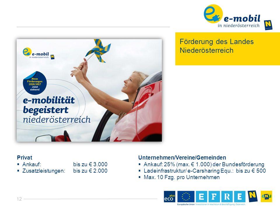 12 Förderung des Landes Niederösterreich Privat  Ankauf:bis zu € 3.000  Zusatzleistungen:bis zu € 2.000 Unternehmen/Vereine/Gemeinden  Ankauf: 25% (max.