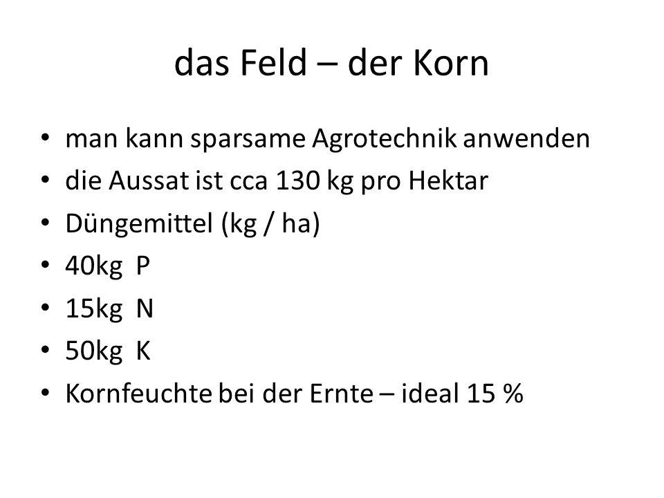 das Feld – der Korn man kann sparsame Agrotechnik anwenden die Aussat ist cca 130 kg pro Hektar Düngemittel (kg / ha) 40kg P 15kg N 50kg K Kornfeuchte bei der Ernte – ideal 15 %