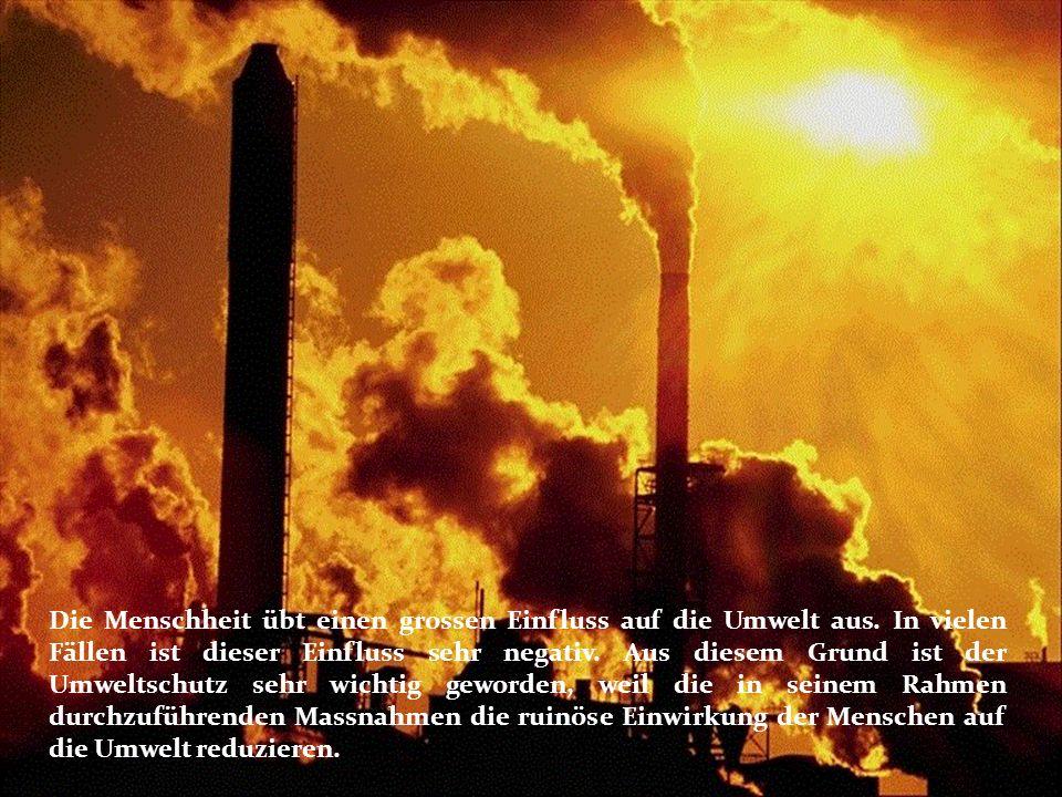 Die Menschheit übt einen grossen Einfluss auf die Umwelt aus.