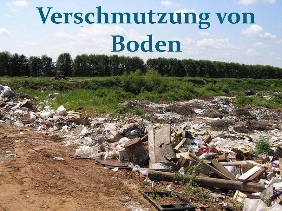 Verschmutzung von Boden