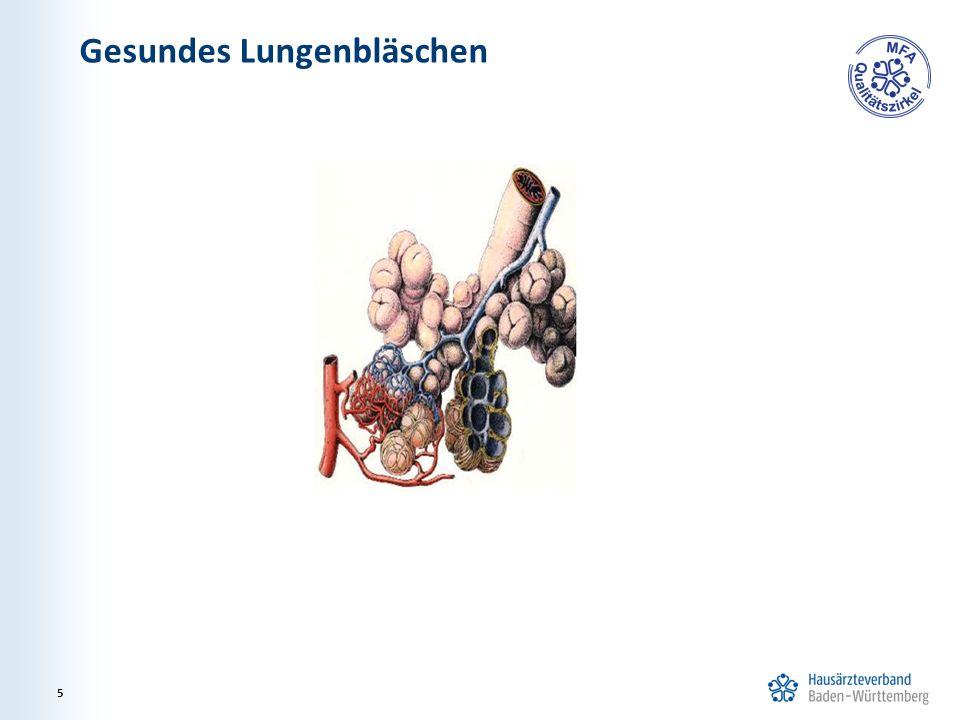Gesundes Lungenbläschen 5