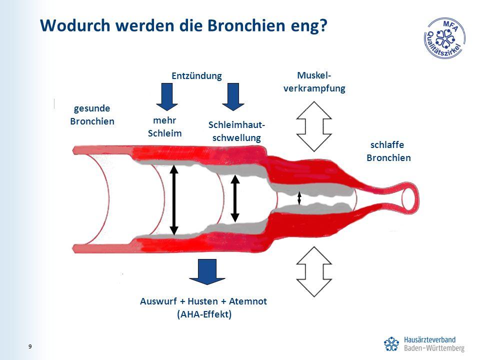 Wodurch werden die Bronchien eng? 9 MuGeGesunder gesunde Bronchien Muskel- verkrampfung schlaffe Bronchien Schleimhaut- schwellung mehr Schleim Entzün