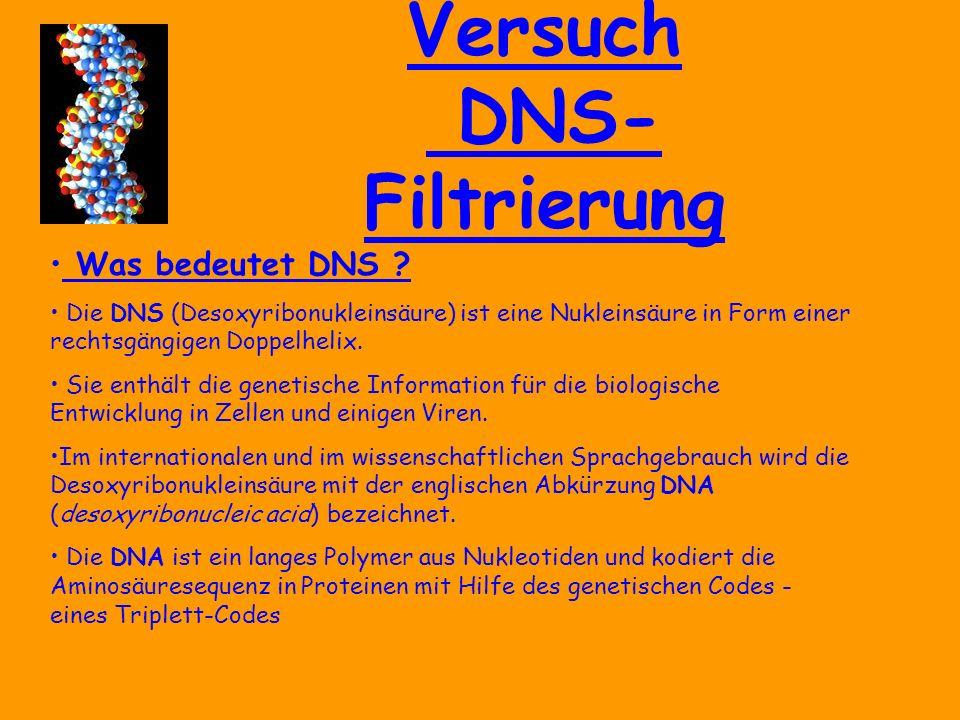 Versuch DNS- Filtrierung Was bedeutet DNS .