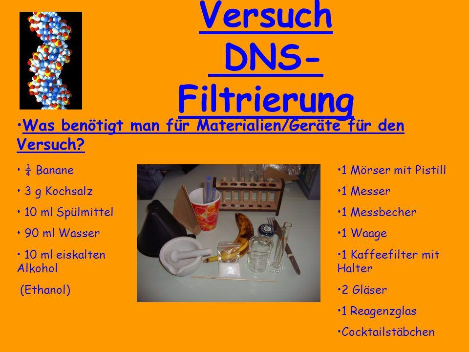 Versuch DNS- Filtrierung Was benötigt man für Materialien/Geräte für den Versuch.