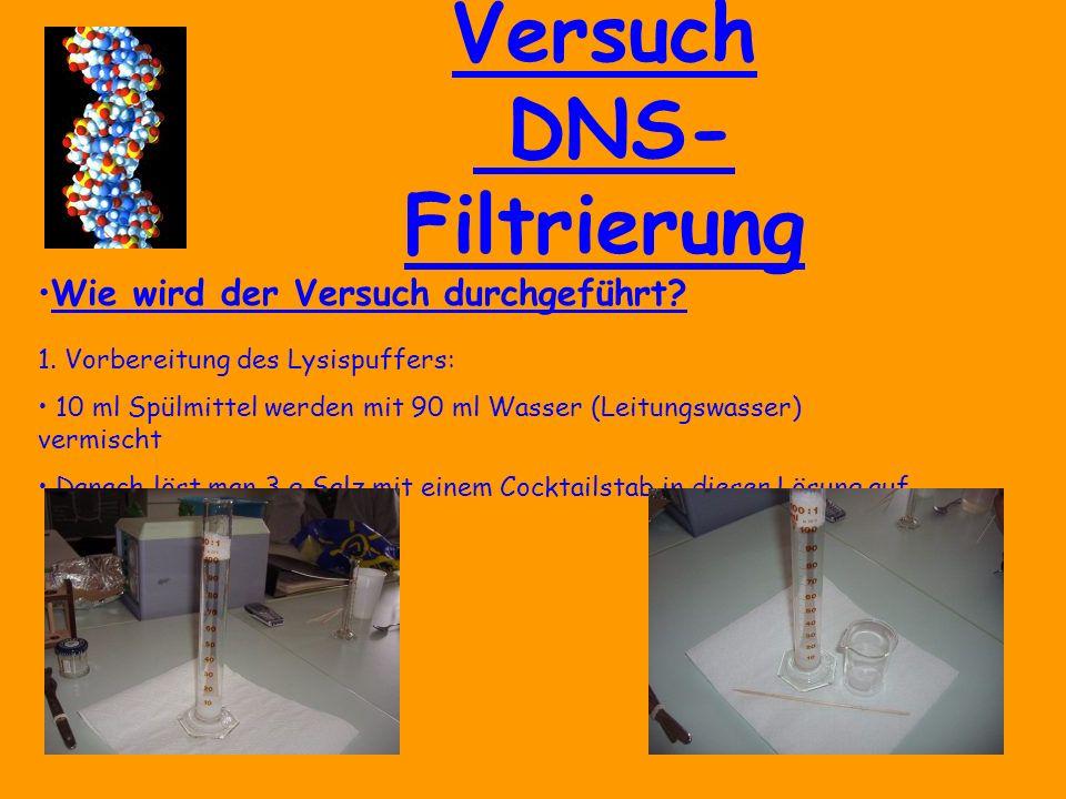 Versuch DNS- Filtrierung Wie wird der Versuch durchgeführt.