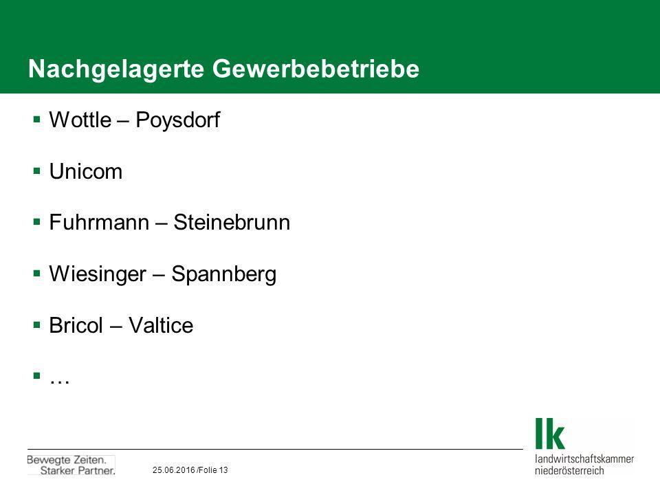 25.06.2016 /Folie 13 Nachgelagerte Gewerbebetriebe  Wottle – Poysdorf  Unicom  Fuhrmann – Steinebrunn  Wiesinger – Spannberg  Bricol – Valtice  …
