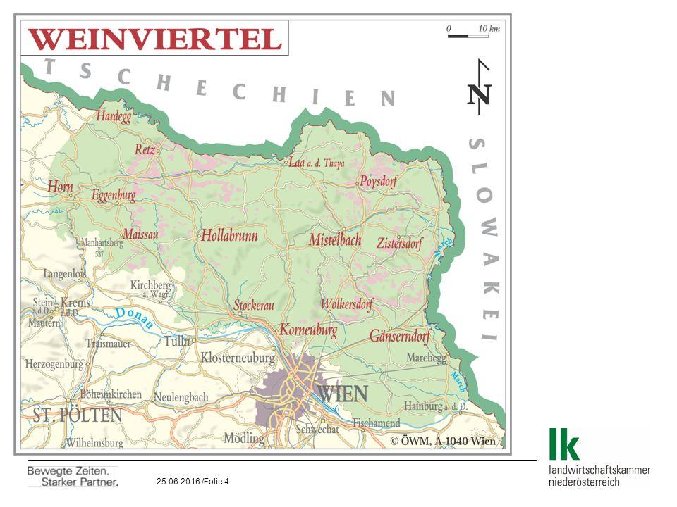 25.06.2016 /Folie 5 Das Weinland Österreich  Österreich:52.500 ha  Niederösterreich:32.100 ha  Weinviertel:17.200 ha  = 33% der österreichischen Weinfläche  Weinbaugebiet Mähren18.500 ha  = 96% der tschechischen Weinfläche  4 Weinbauuntergebiete:  Mikulov 4.750 ha  Velké Pavlovice5.200 ha  Sovácko5.000 ha  Znojmo3.500 ha Quelle: www.wineofczechrepublic.cz