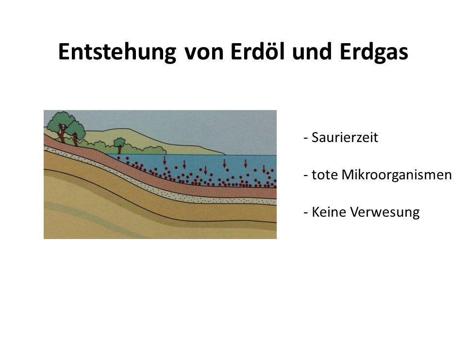 Entstehung von Erdöl und Erdgas - Saurierzeit - tote Mikroorganismen - Keine Verwesung
