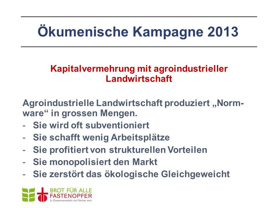 """Ökumenische Kampagne 2013 Kapitalvermehrung mit agroindustrieller Landwirtschaft Agroindustrielle Landwirtschaft produziert """"Norm- ware"""" in grossen Me"""