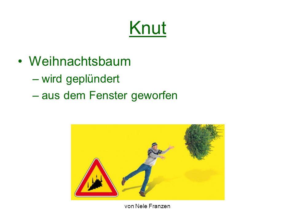 von Nele Franzen Knut Weihnachtsbaum –wird geplündert –aus dem Fenster geworfen