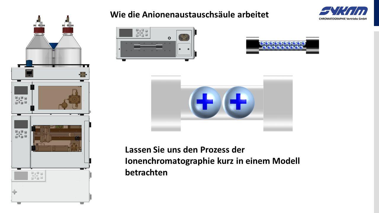 Wie die Anionenaustauschsäule arbeitet Lassen Sie uns den Prozess der Ionenchromatographie kurz in einem Modell betrachten