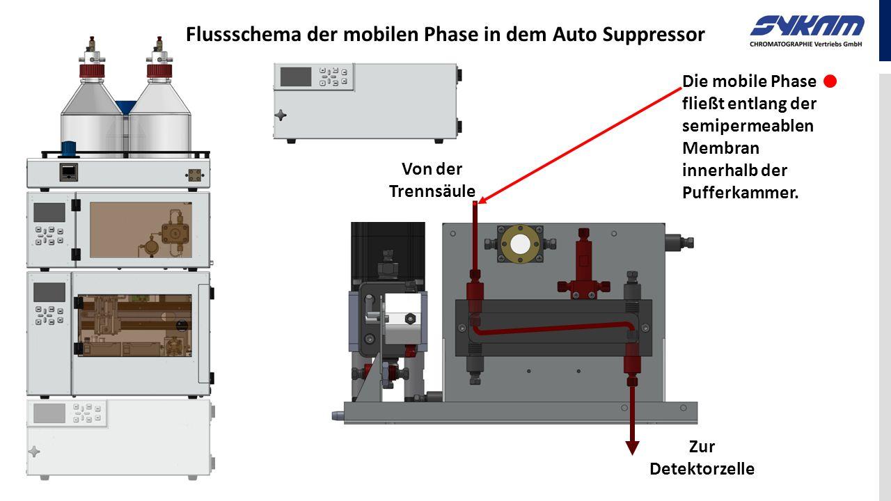 Von der Trennsäule Die mobile Phase fließt entlang der semipermeablen Membran innerhalb der Pufferkammer. Flussschema der mobilen Phase in dem Auto Su