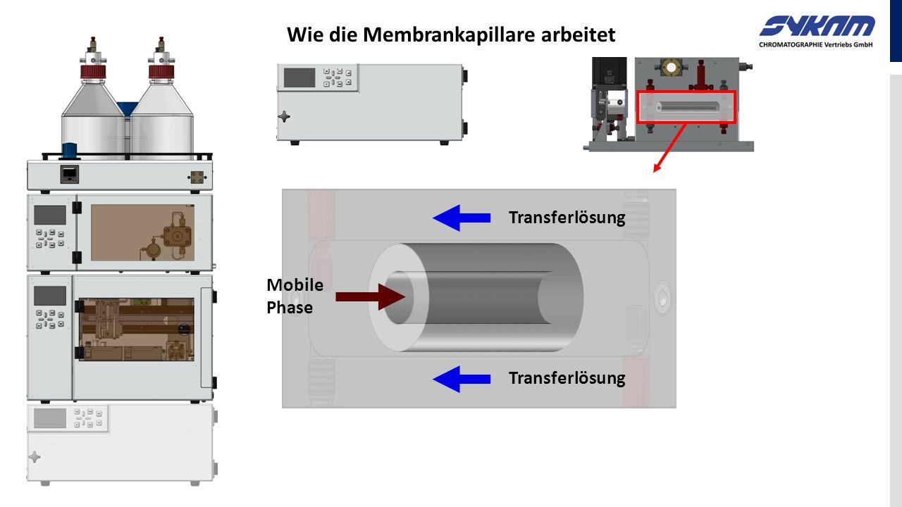 Wie die Membrankapillare arbeitet Transferlösung Mobile Phase Transferlösung