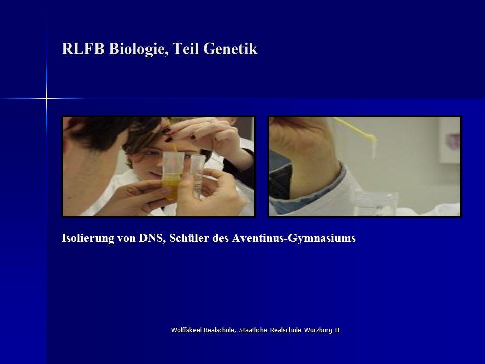 Wolffskeel Realschule, Staatliche Realschule Würzburg II RLFB Biologie, Teil Genetik Isolierung von DNS, Schüler des Aventinus-Gymnasiums