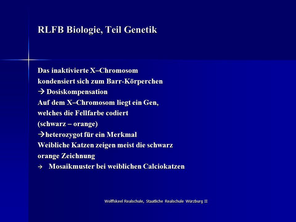 Wolffskeel Realschule, Staatliche Realschule Würzburg II RLFB Biologie, Teil Genetik Das inaktivierte X–Chromosom kondensiert sich zum Barr-Körperchen