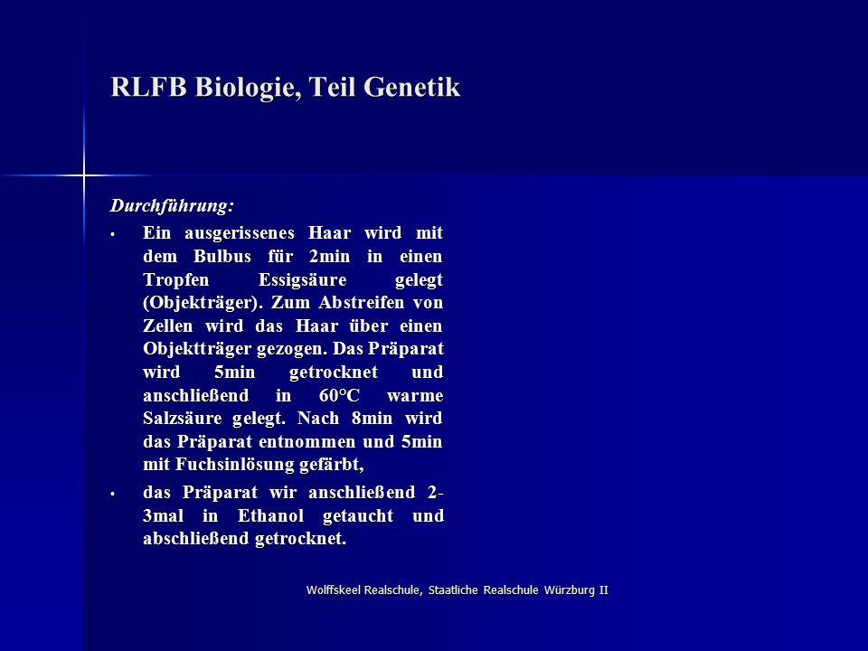 Wolffskeel Realschule, Staatliche Realschule Würzburg II RLFB Biologie, Teil Genetik Durchführung: Ein ausgerissenes Haar wird mit dem Bulbus für 2min in einen Tropfen Essigsäure gelegt (Objekträger).