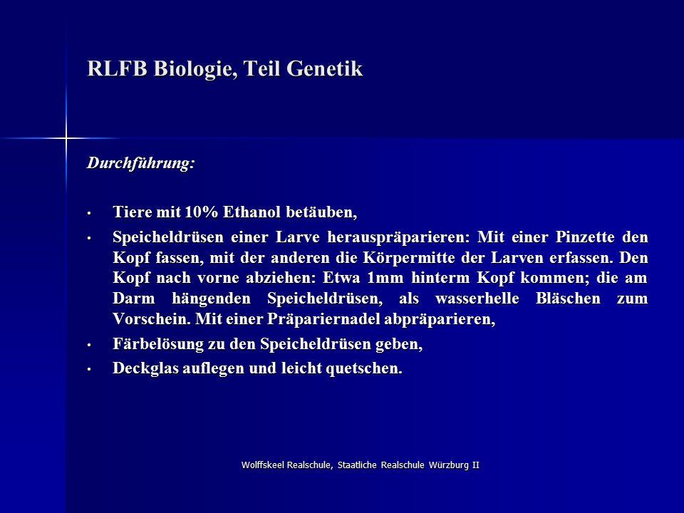 Wolffskeel Realschule, Staatliche Realschule Würzburg II RLFB Biologie, Teil Genetik Durchführung: Tiere mit 10% Ethanol betäuben, Tiere mit 10% Ethan