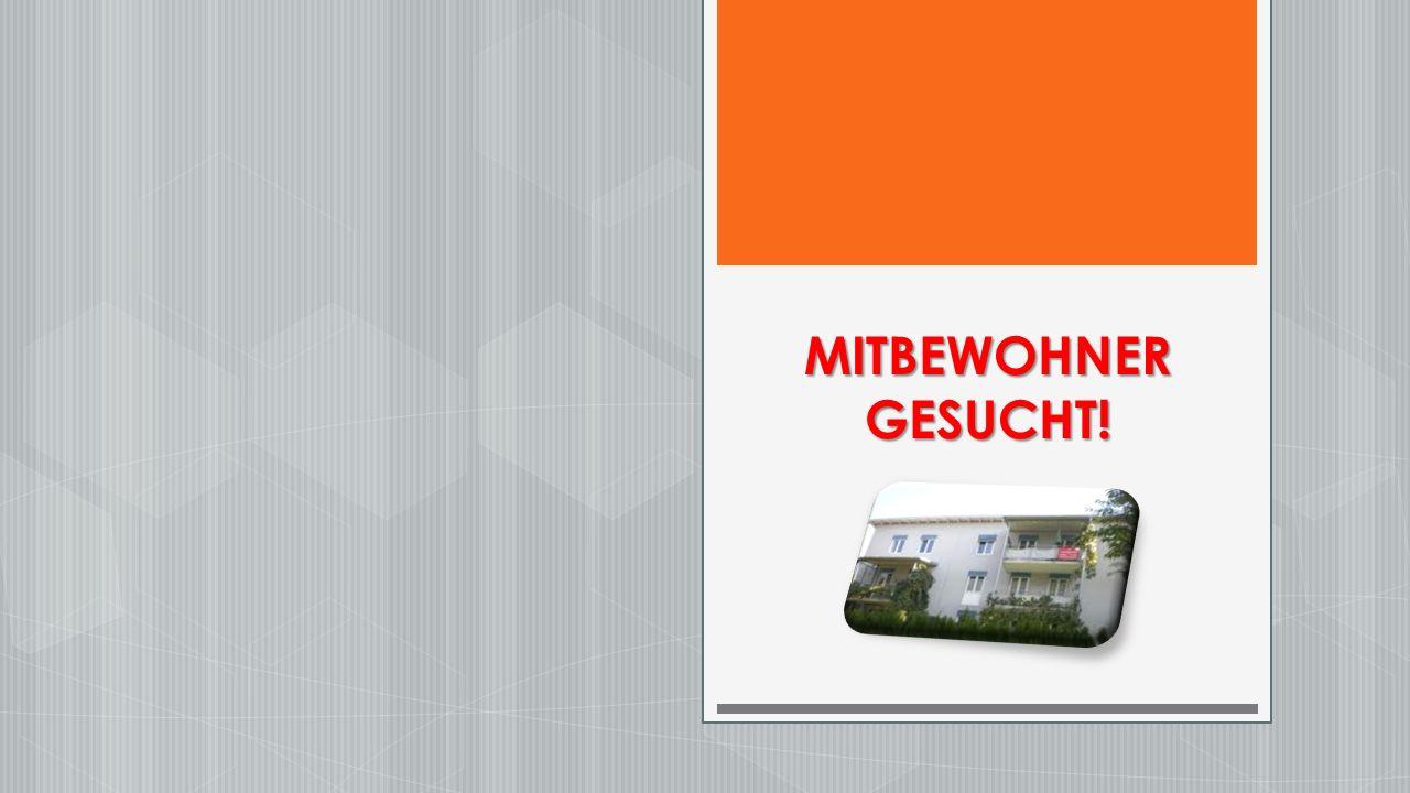MITBEWOHNER GESUCHT!