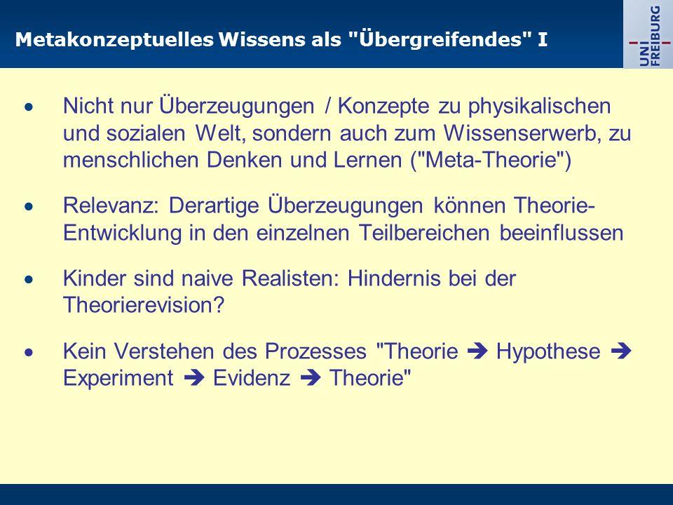 Metakonzeptuelles Wissens als