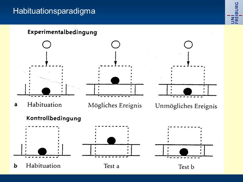 Habituationsparadigma