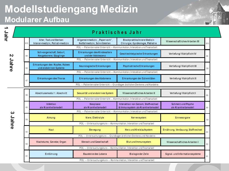 U N I V E R S I T Ä T S M E D I Z I N B E R L I N S4 S3 S2 S1 S8 S7 S6 S5 S10 S9 POL --- Untersuchungskurs --- Kommunikation, Interaktion und Teamarbeit POL --- Untersuchungskurs --- Grundlagen ärztlichen Denkens und Handelns POL --- Untersuchungskurs --- Kommunikation, Interaktion und Teamarbeit POL --- Patientennaher Unterricht --- Kommunikation, Interaktion und Teamarbeit POL --- Patientennaher Unterricht --- Grundlagen ärztlichen Denkens und Handelns POL --- Patientennaher Unterricht --- Kommunikation, Interaktion und Teamarbeit POL --- Untersuchungskurs --- Kommunikation, Interaktion und Teamarbeit Wachstums, Gewebe, Organ Mensch und GesellschaftBlut und Immunsystem Wissenschaftliches Arbeiten I Haut Bewegung Herz und Kreislaufsystem Ernährung, Verdauung, Stoffwechsel Atmung Niere, Elektrolyte Nervensystem Sinnesorgane Infektion als Krankheitsmodell Neoplasie als Krankheitsmodell Interaktion von Genom, Stoffwechsel & Immunsystem als Krankheitsmodell Schmerz und Psyche als Krankheitsmodell Abschlussmodul 1.