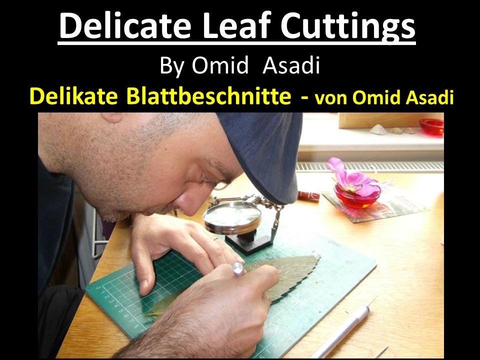 Delicate Leaf Cuttings By Omid Asadi Delikate Blattbeschnitte - von Omid Asadi