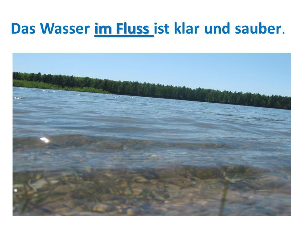 im Fluss Das Wasser im Fluss ist klar und sauber.