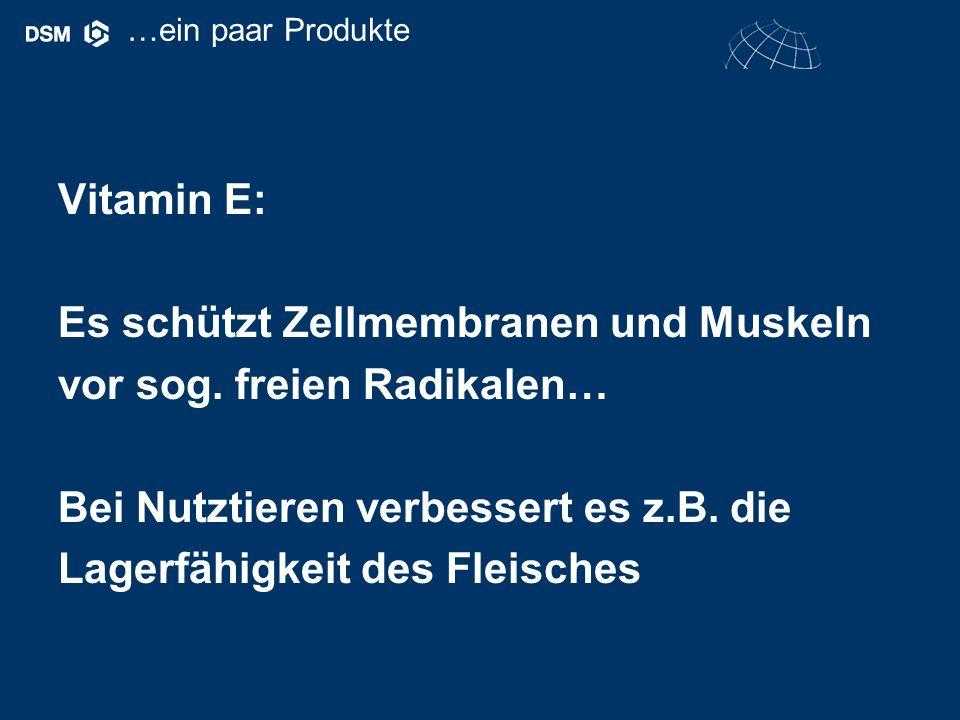 Vitamin E: Es schützt Zellmembranen und Muskeln vor sog.